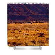 Utah Winter Sun Shower Curtain