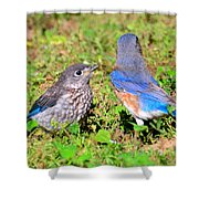 A Mothers Care Shower Curtain by David Lee Thompson