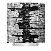 V Na Exposed Cont L Bw Shower Curtain