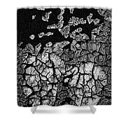 V Na Texture Cont L Bw P 142 Shower Curtain