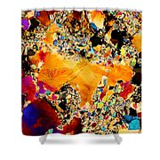 Goldon Nuggets From Space Shower Curtain