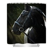 Val Headshot Shower Curtain