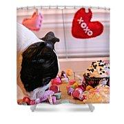 Valentine Be Mine Shower Curtain