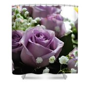 Valentine Roses Shower Curtain