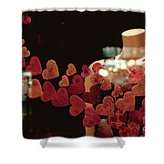 Valentine Window Display Shower Curtain