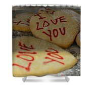 Valentine Wishes And Cookies Shower Curtain