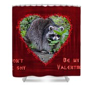Valentine's Day Greeting Card - Raccoon Shower Curtain