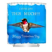 Valentines Day I Love You This Much Shower Curtain