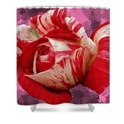 Valentine's Day Rose Shower Curtain