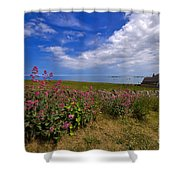 Valerian By A Stone Wall On The Northumberland Coast Shower Curtain