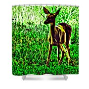 Valley Forge Deer Shower Curtain