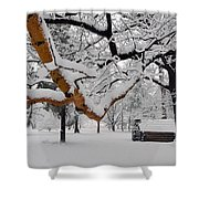 Valley Forge Winter 9817 Shower Curtain