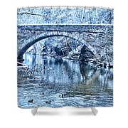 Valley Green Ducks In Winter Shower Curtain
