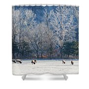 Valley Of Elk Shower Curtain