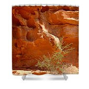 Valley Of Fire Rock Formation Shower Curtain