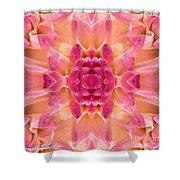 Valley Porcupine Abstract Shower Curtain