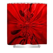 Values In Red Shower Curtain