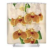 Vandas Anderiana Shower Curtain by Philip Ralley