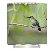 Vanishing In Nature.. Shower Curtain