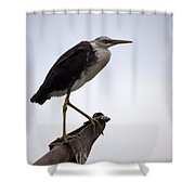 Vantage Point V10 Shower Curtain
