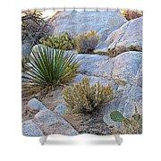 Varied Desert Flora Along Barker Dam Trail In Joshua Tree Np-ca Shower Curtain