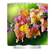 Variegated Snapdragon 2 Shower Curtain