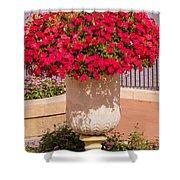 Vase Of Petunias Shower Curtain