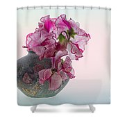 Vase Of Pretty Pink Sweet Peas 2 Shower Curtain