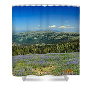 Vast View And Lupine Shower Curtain