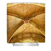 Vaulted Ceiling In Collegiate Church Of Saint Sylvain Levroux France Shower Curtain