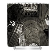 Vaults Of Rouen Cathedral Shower Curtain