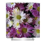 Vegas Butterfly Garden Flowers Colorful Romantic Interior Decorations Shower Curtain