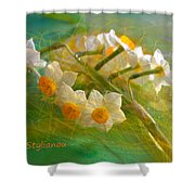 Veil On  Narcissus Shower Curtain