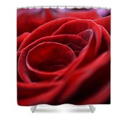 Velvet In Red Shower Curtain