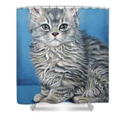 Velvet Kitten Shower Curtain