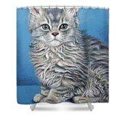 Velvet Kitten Shower Curtain