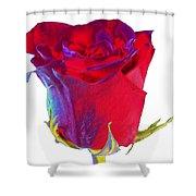 Velvet Rose Bud 2 Shower Curtain