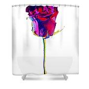 Velvet Rose Bud Shower Curtain