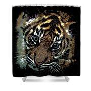Velvet Tiger Cub Shower Curtain