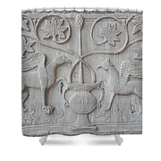 Venetian Stone Carving Shower Curtain