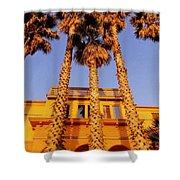 Venice Plams At Sunset Shower Curtain
