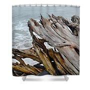 Ventura Driftwood II Shower Curtain
