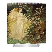 Venus And Anchises Shower Curtain