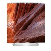 Vermilion Canyon Walls Shower Curtain