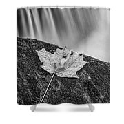 Vermont Autumn Maple Leaf Black And White Shower Curtain