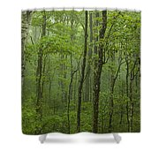 Vermont Mount Mansfield Green Forest Fog Panorama Shower Curtain