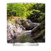 Vermont River Shower Curtain