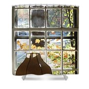 Vermont Window East View  Shower Curtain
