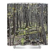 Vernal Pool 1 Shower Curtain