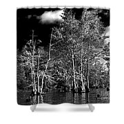 Vernon Lake Trip Shower Curtain